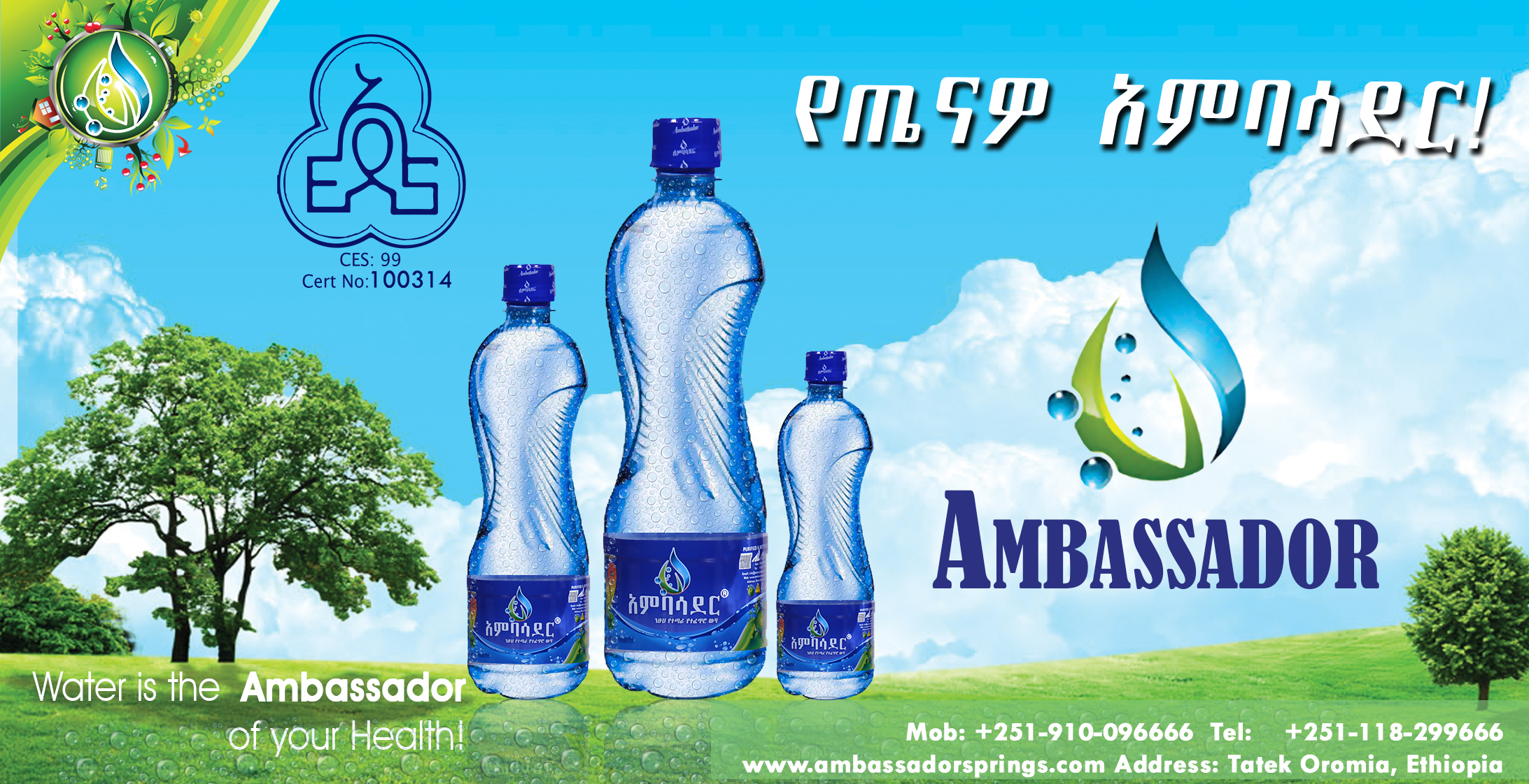 Ambassdor National