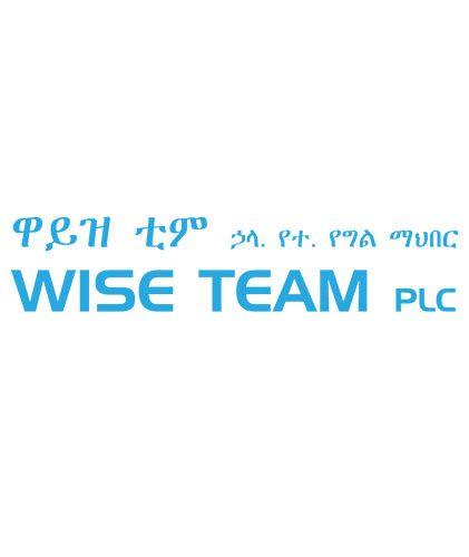 WISE TEAM PLC