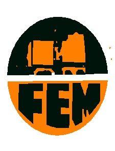 FORTSCHRITT ELECTROMECHANICAL SERVICE PLC /FEMS/