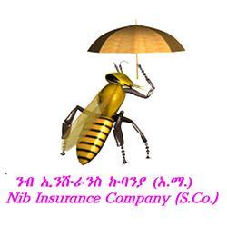NIB INSURANCE COMPANY S.C.