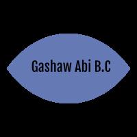 Gashaw Abi Building Construction | ጋሻው አቢ ህንጻ ስራ ተቋራጭ