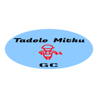 Tadel Mitku General Construction PLC   ታደለ ምትኩ ጠቅላላ ስራ ተቋራጭ