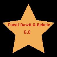 Dawit and Bekele General Construction P.S | ዳዊት እና በቀለ ጠቅላላ ስራ ተቋራጭ