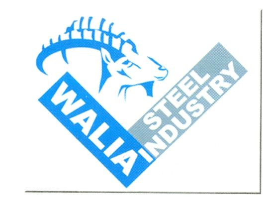 Walia Steel Industry PLC