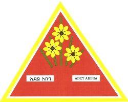Yirgalem Addis Textile Factory PLC