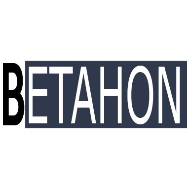 BETAHON  Security & Safety System Import Application  and Consultancy Enterprise