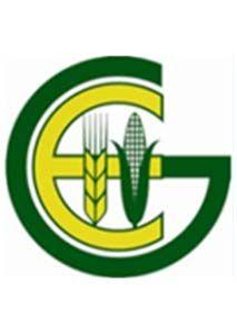GEDEB Engineering PLC