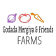 Godada Mergiya and Friends Agro processing