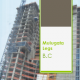 Mulugeta Legesse Building Construction