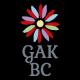 GAK Building Construction   ጂኤኬ የህንፃ ስራ ተቋራጭ