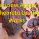 Terusew Argaw Wshemetu Leather Works / ጥሩሰው አርጋው ወሽመጡ  ቆዳ እና ቆዳ ምርቶች