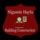 Nigussie Haylu Building Construction /ንጉሴ ሃይሉ ህንፃ ስራ ተቋራጭ