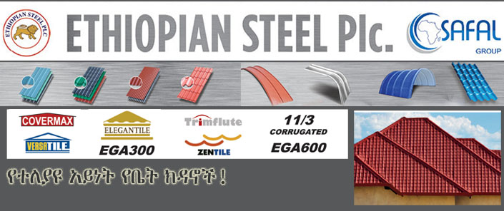 Ethiopian Steel Plc